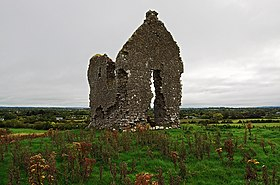 Castles of Munster, Knocklong, Limerick - geograph.org.uk - 1541333.jpg