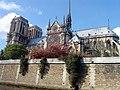Cathédrale Notre Dame de Paris.jpg