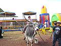 Cebu en la Feria del Mole 2014 02.JPG