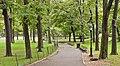 Central Park path.jpg