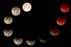 Chadmill - Composite of eclipse progression (by-sa).jpg