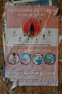French-language poster displaying vectors of Chagas disease and prevention methods such as use of bednets and insect screens