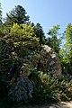 Chaos granitique Pre Daval vallee du Fossat 2015-08-25.jpg
