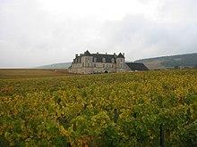 vignes et chateau du clos vougeot