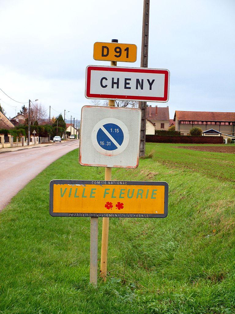 Maisons à vendre à Cheny(89)