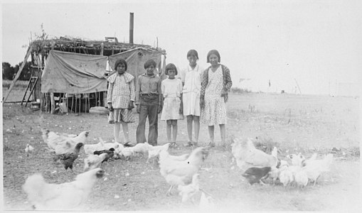 Children and chickens in front of chicken house