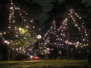 Altadena, California - Christmas Tree Lane