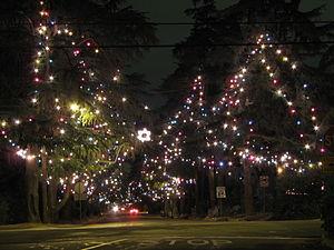 Christmas Tree Lane - Christmas Tree Lane, view looking south down Santa Rosa Avenue from Altadena Drive