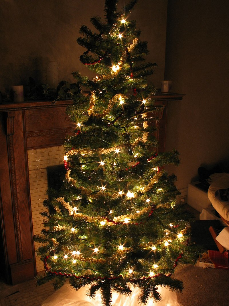 Christmas trees are one of the most widespread Christmas traditions qVgTcuem