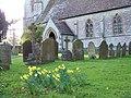 Churchyard, St Martin's Church, Zeals - geograph.org.uk - 735989.jpg