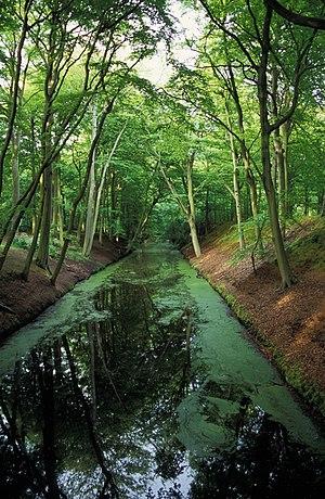 Huys Clingendael - Image: Clingendael landgoed park