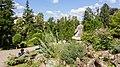 Cluj-Napoca Botanical Garden-9976.jpg