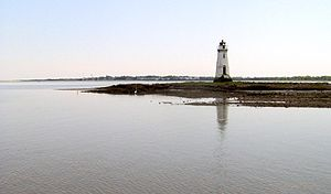 The Cockspur Lighthouse at the mouth of the Sa...