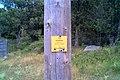 Coll de Manrella 2015 07 29 04 M8.jpg