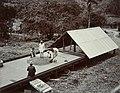 Collectie Nationaal Museum van Wereldculturen TM-60062243 Droogplaats voor cacaobonen Trinidad fotograaf niet bekend.jpg