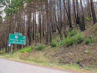 Eagle Creek Fire - Trees along Interstate 84, near Cascade Locks, show burnt bark in June 2018.