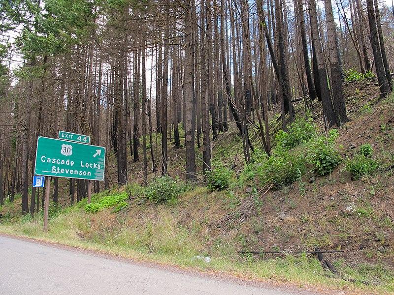 File:Columbia Gorge burn along Interstate 84.jpg