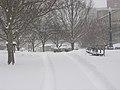 Columbus, Ohio 2008 snowstorm 21.jpg