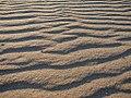 Coney Island's Sand (88376544).jpg