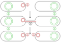 Conjugative plasmids.png