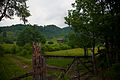 Country-farm-house-gate - West Virginia - ForestWander.jpg