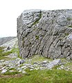 Crag on Benbrack ridge - geograph.org.uk - 201015.jpg