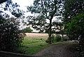 Crockham Hill Common - geograph.org.uk - 1501795.jpg