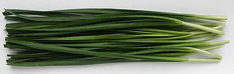 Allium tuberosum - Image: Cut Garlic Chives