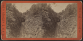 Cut and Tunnel between Garrisons and Cold Spring, by E. & H.T. Anthony (Firm).png