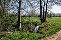 D-BW-KN-Singen und Steißlingen und Volkertshausen - Naturschutzgebiet 'Weitenried' 004.jpg
