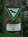 DE-BW-RT ND Schwanenbergfels (Schafwäschefels) 84150780059 DSC01181 01.jpg
