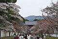 Daigoji temple 01.jpg