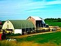 Dairy Farm - panoramio (3).jpg