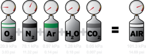 Dalton's law - An illustration of Dalton's law using the gases of air at sea level.