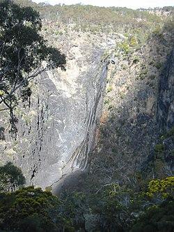 wiki werrikimbe national park