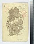 Deacon McGuire, Philadelphia Quakers (NYPL b13537024-56824).jpg