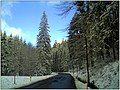 December Black Mountains Foret Noir - Master Mythos Black Forest Photography 2013 High Glotter Valley Sägendobel Pass - panoramio (4).jpg