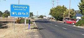 Delungra (3)