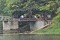 Dhanmondi 8 no Lake bridge.jpg