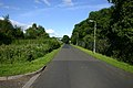 Dillichip Loan - geograph.org.uk - 477492.jpg