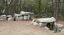 image illustrative de l'article Dolmen de Mané-Kerioned