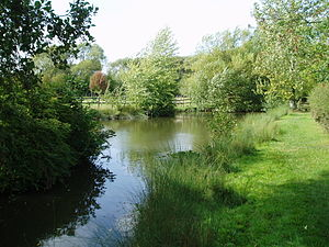 Donnington Wood Canal - The basin at the foot of the Lilleshall incline now serves as a pond