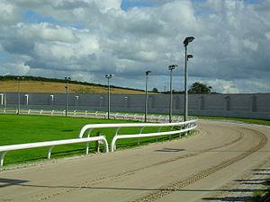 New Grosvenor Stadium - Greyhound track around football pitch