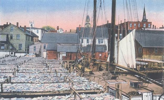Drying Fish, Gloucester, MA