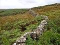 Drystane Dyke at Craigmoddie - geograph.org.uk - 561361.jpg