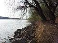 Duna Csicsónál - panoramio (1).jpg
