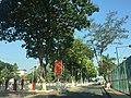 Duong Nguyen du, phuong Mỹ Bình, tp. Long Xuyên, An Giang, Việt Nam - panoramio.jpg