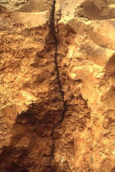 Foto von entlang einer Röhre aufgegrabenem Erdboden (Schnitt)