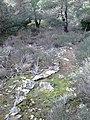 Ekali, Greece - panoramio (1).jpg