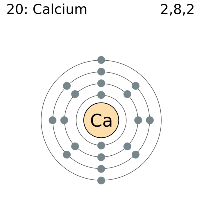 file electron shell 020 calcium png wikimedia commons : electron diagram - findchart.co